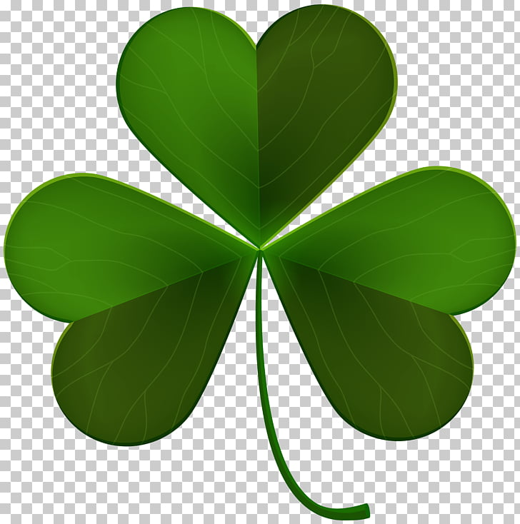 File formats Lossless compression, Shamrock PNG clipart.