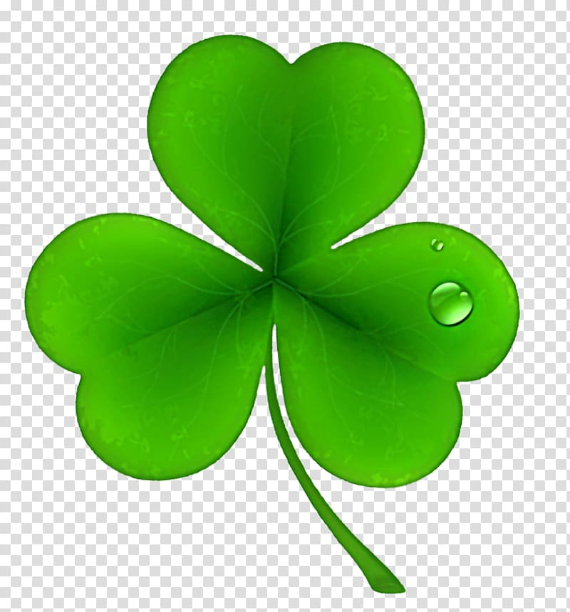Ireland Shamrock Saint Patrick\\\'s Day Irish people , Clover.