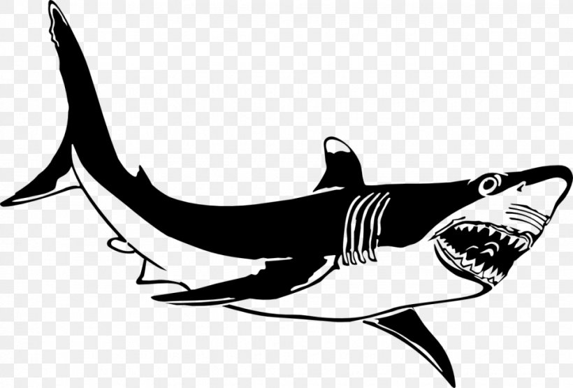 Great White Shark Shark Jaws Clip Art, PNG, 970x657px, Shark.
