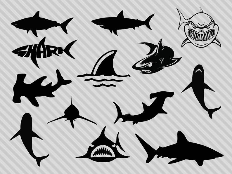 Shark svg bundle, shark clipart, shark silhouette svg, hammerhead shark  svg, great white shark svg, dxf, png.