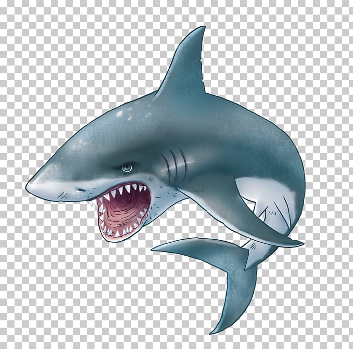 Shark Sticker , sharks PNG clipart.