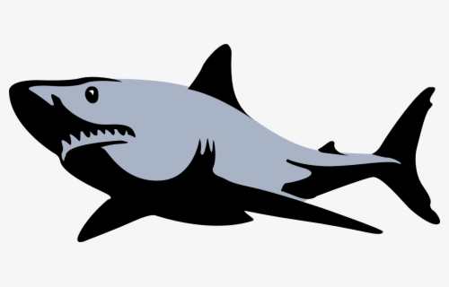 Free Sharks Clip Art with No Background.