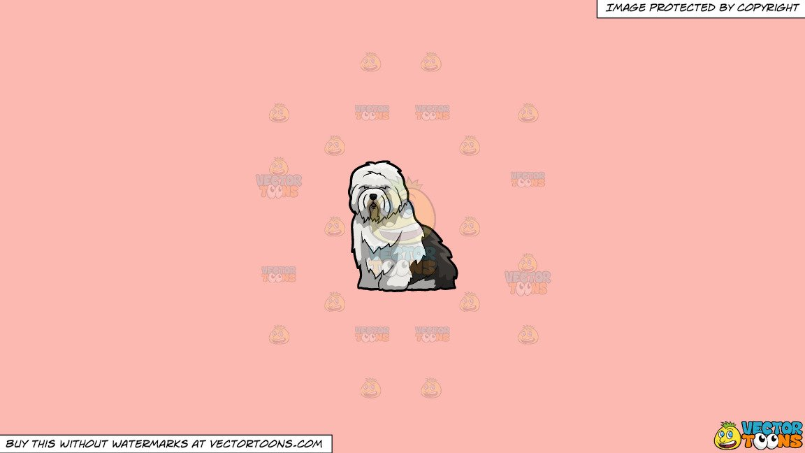 Clipart: A Cute And Fluffy Old English Sheepdog on a Solid Melon Fcb9B2  Background.