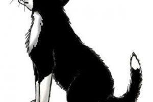 Clipart sheepdog 1 » Clipart Portal.