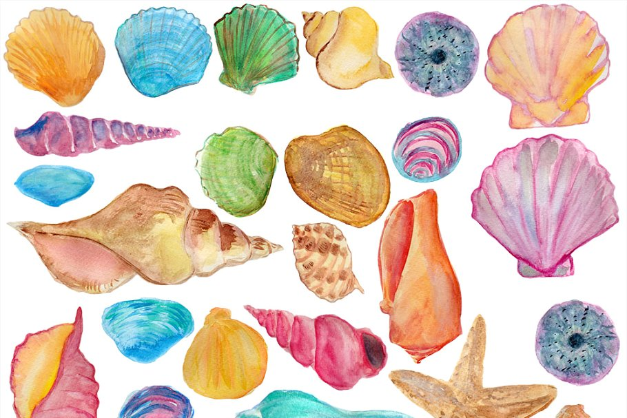 Shells watercolor clip art.