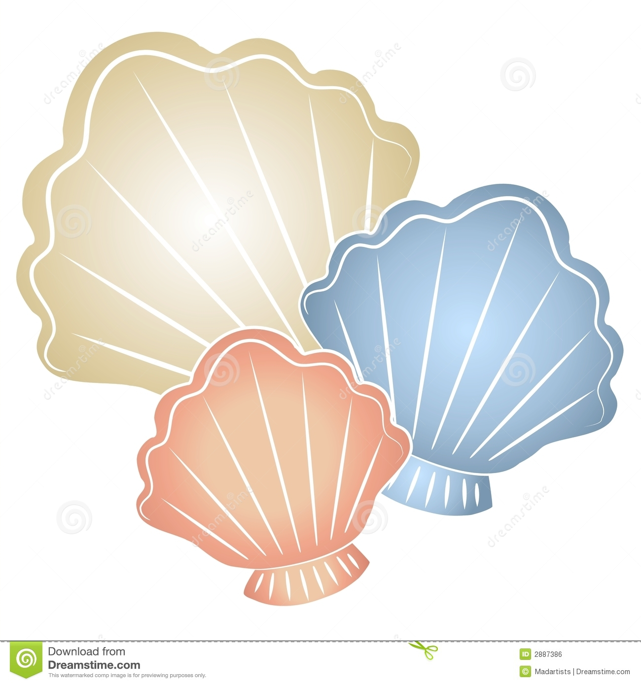 Sea shells clipart 7 » Clipart Station.