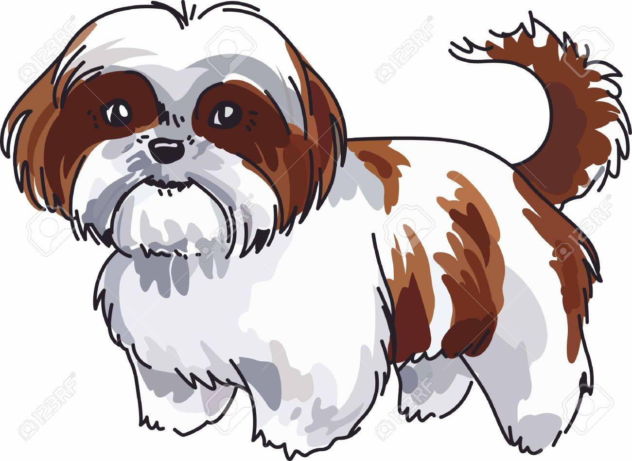 Have a cute shih tzu with you always with this little dog..
