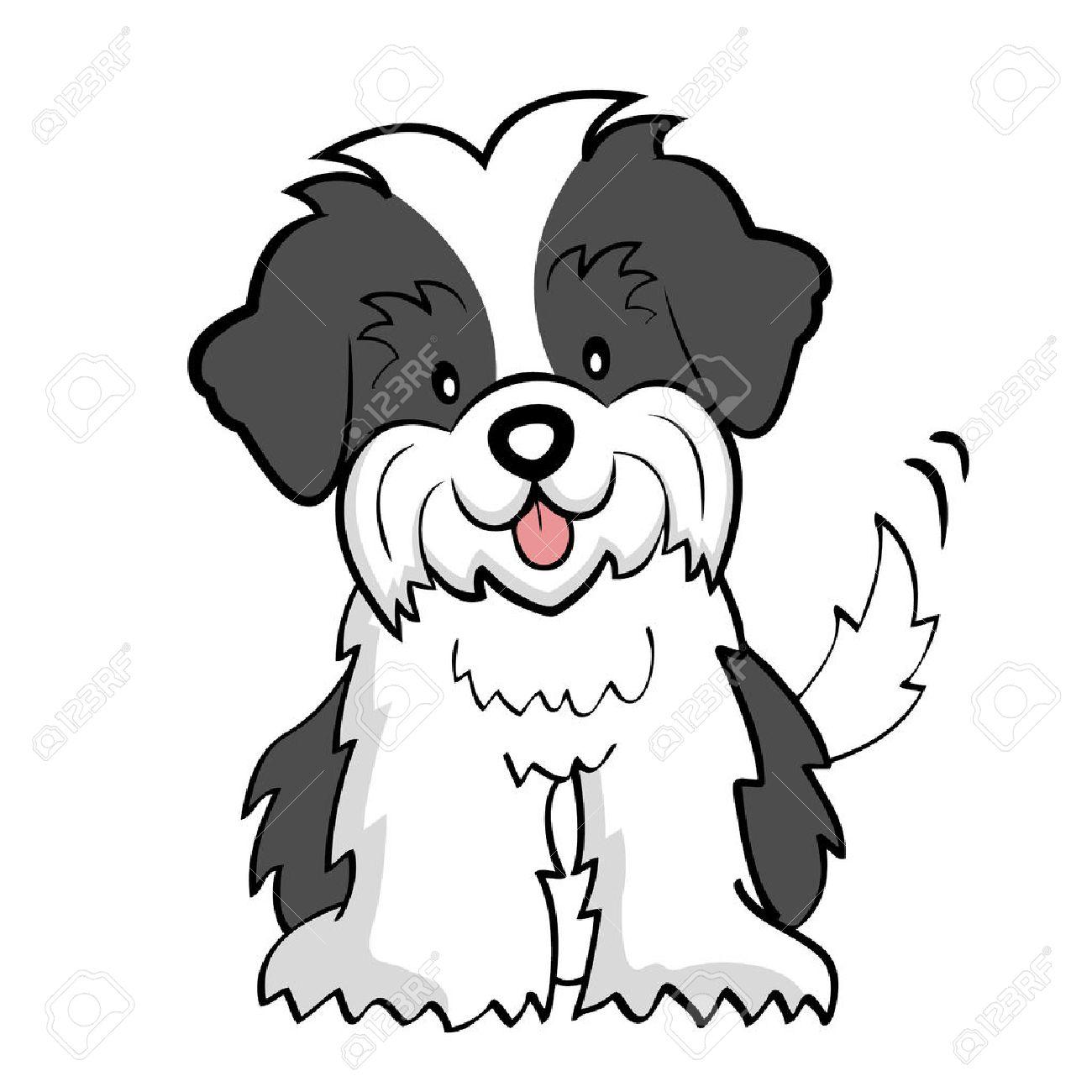 Puppy cut Shih tzu isolated.