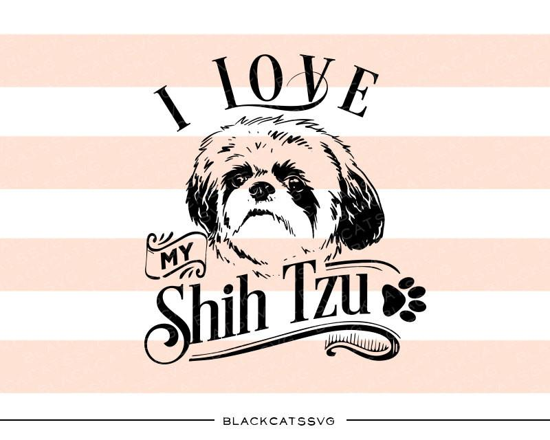 I love my Shih Tzu.