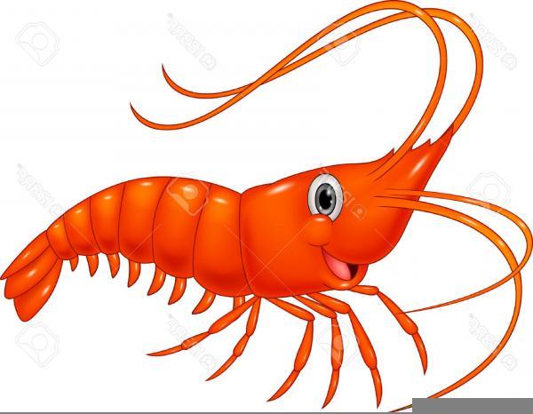 Clipart Jumbo Shrimp.