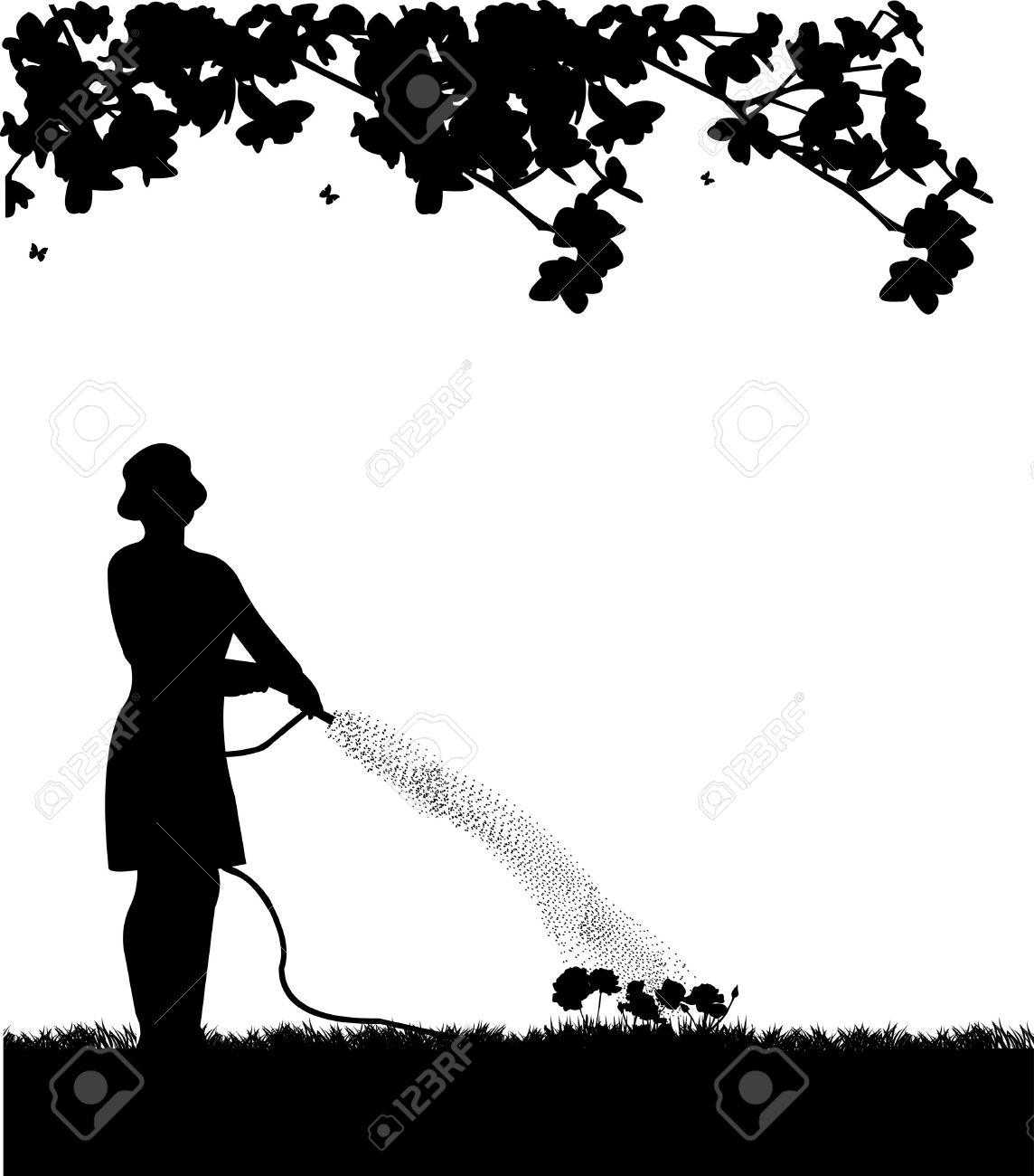 Woman Gardener Watering Flowers, Roses With Hose In Spring.