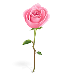 Free Single Rose Cliparts, Download Free Clip Art, Free Clip.