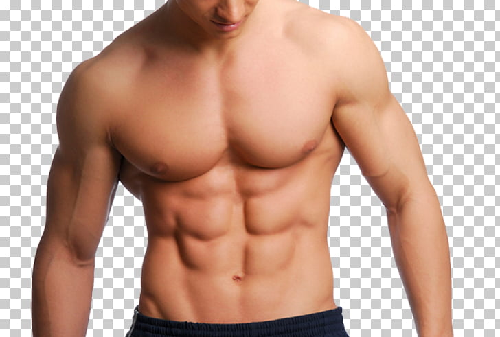 Rectus abdominis muscle Human body Flat Stomach Nutrient.