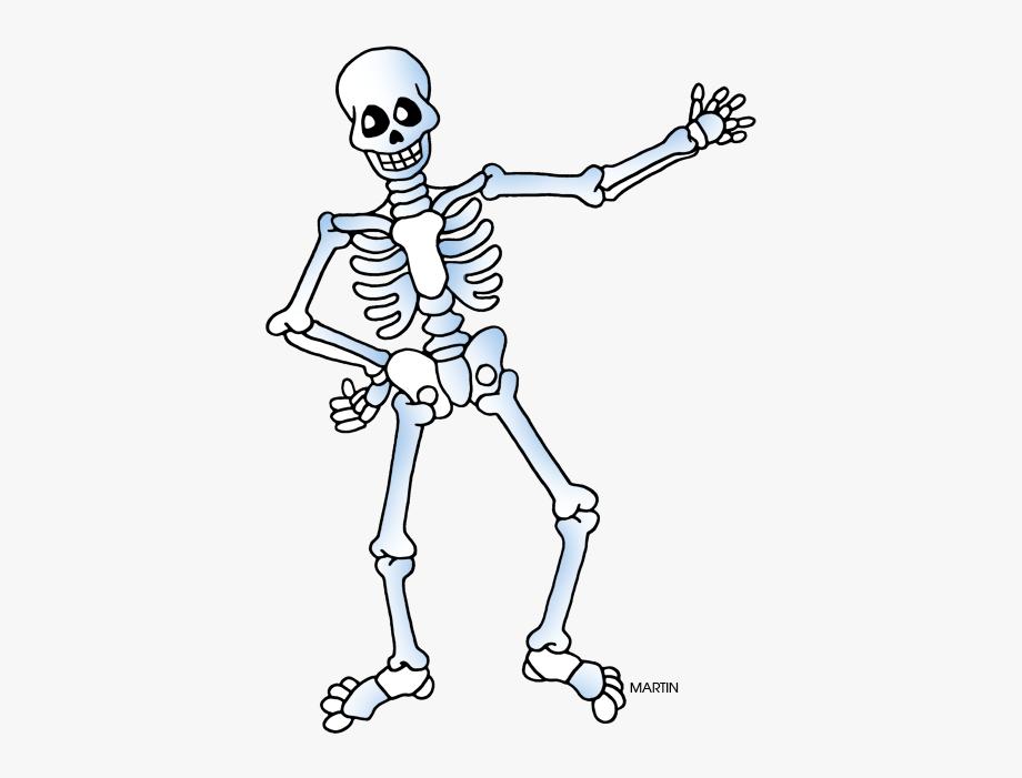 Labeling The Skeletal System.