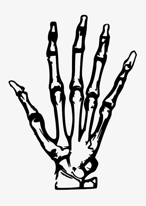 Simple Hand Painted Skeleton Hand.