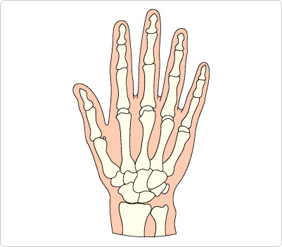 Free Skeleton Hand Cliparts, Download Free Clip Art, Free.