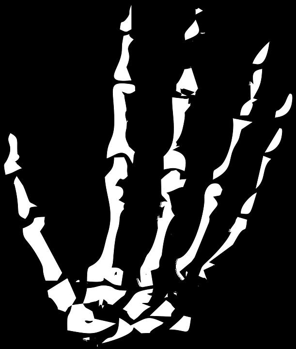 Hand, Skeleton, Skeleton Hand, Halloween, Human, Bone.