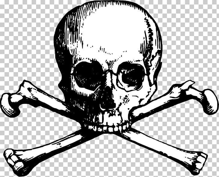 Skull and Bones Skull and crossbones , skulls PNG clipart.
