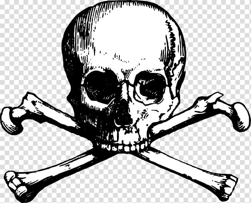 Skull and Bones Skull and crossbones , skulls transparent.