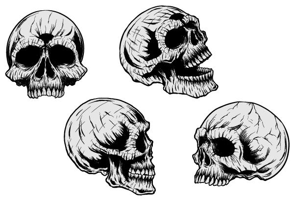 Vector Clip Art Skulls.