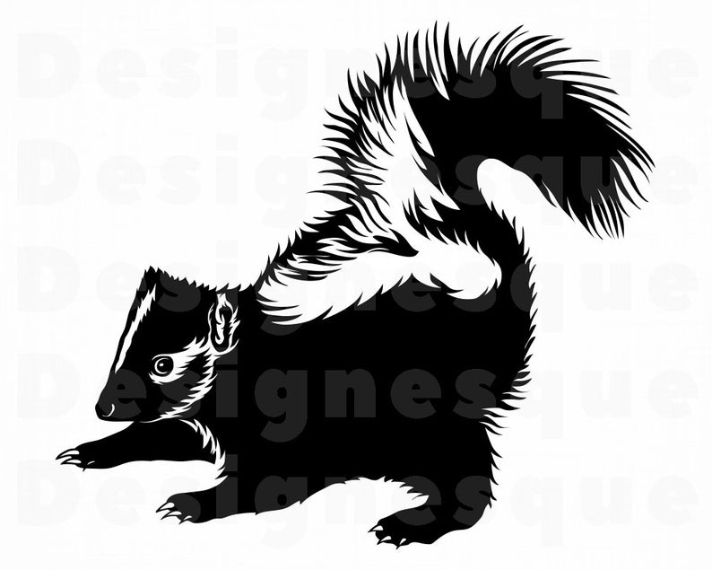 Baby Skunk SVG, Skunk SVG, Skunk Clipart, Skunk Files for Cricut, Skunk Cut  Files For Silhouette, Skunk Dxf, Skunk Png, Eps, Skunk Vector.