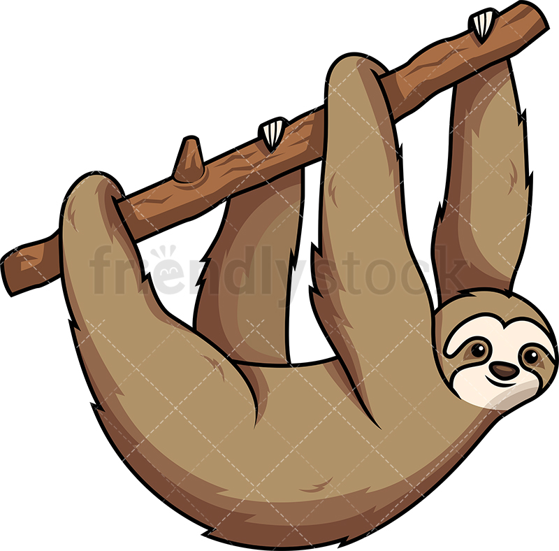 Sloth Hanging From Tree Branch With All Fours.