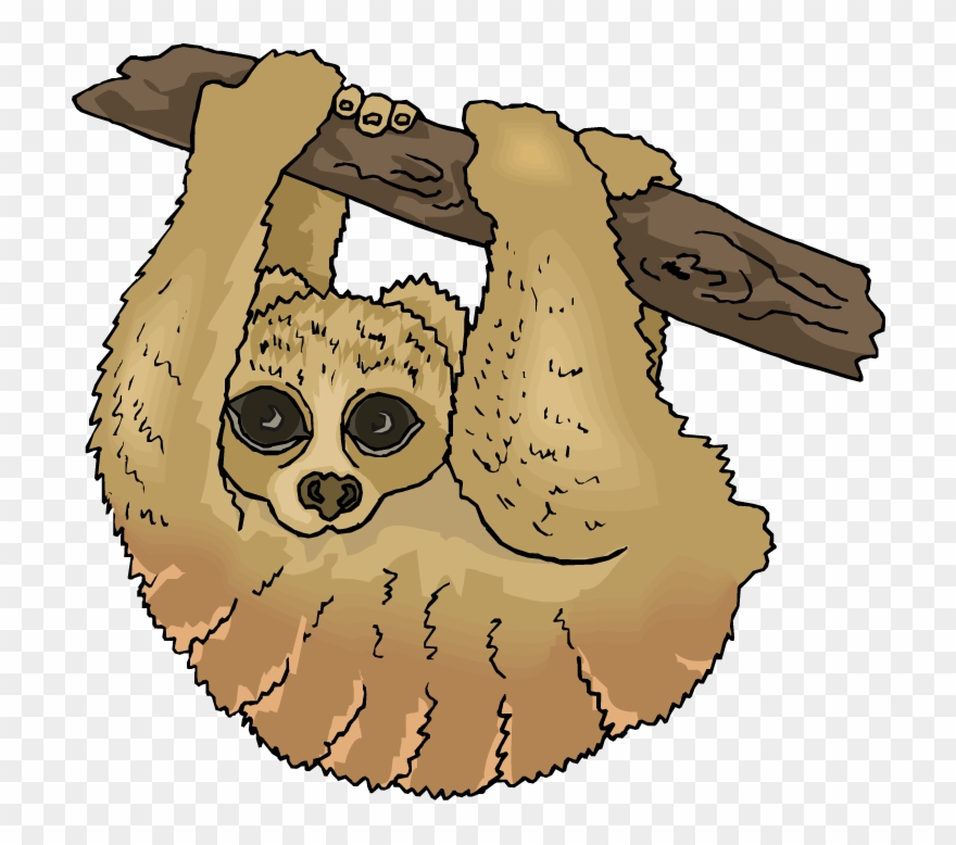 Free Sloth Clipart The Cliparts.