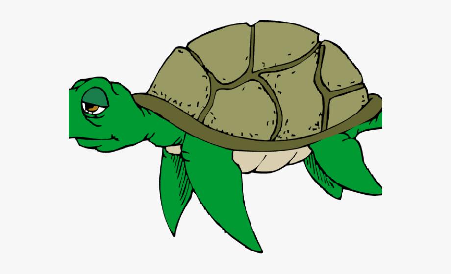 Slow Clipart Sick Turtle.