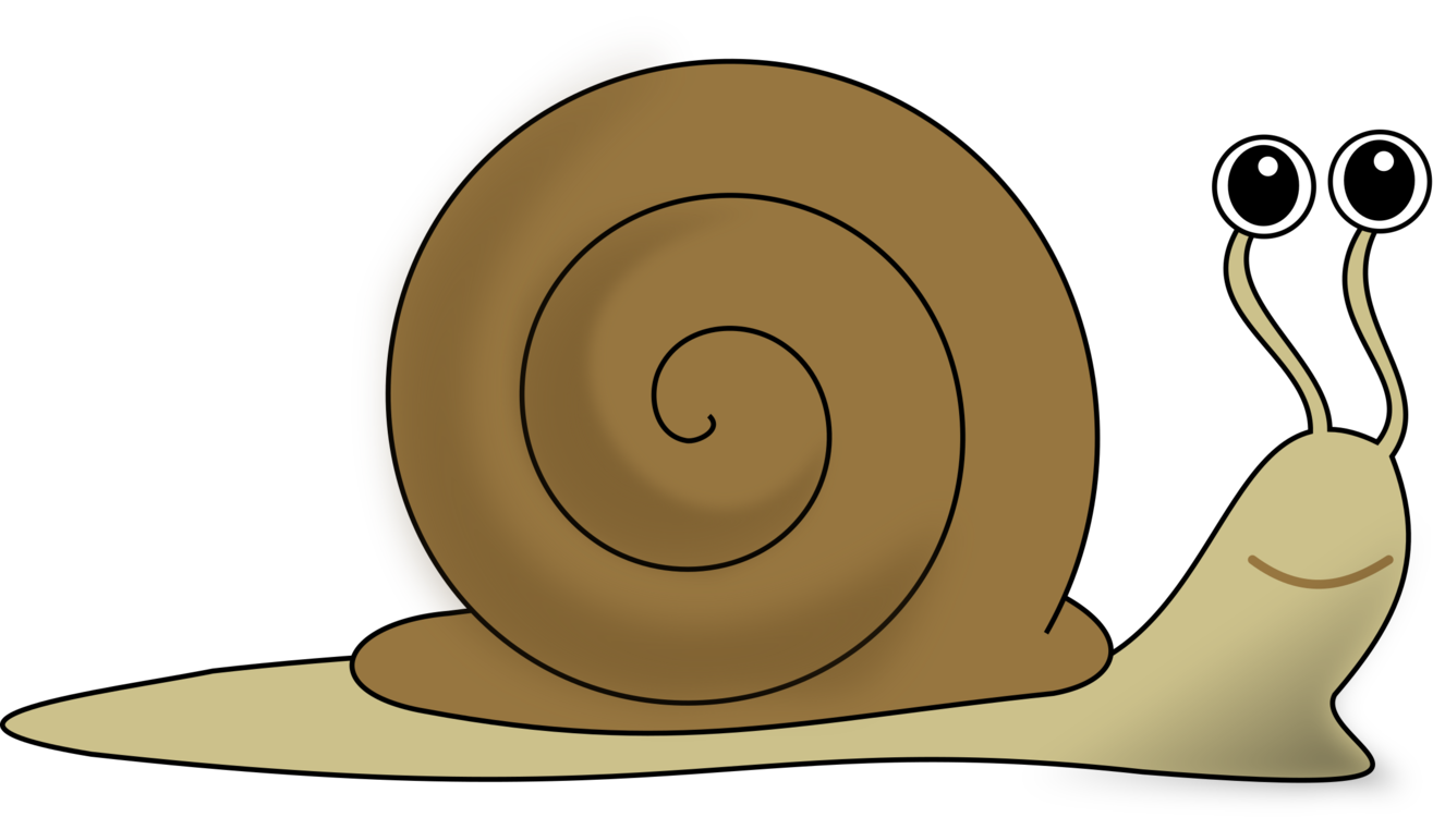Snail,Invertebrate,Snails And Slugs PNG Clipart.