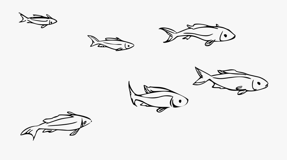 Clipart Of School Of Fish.