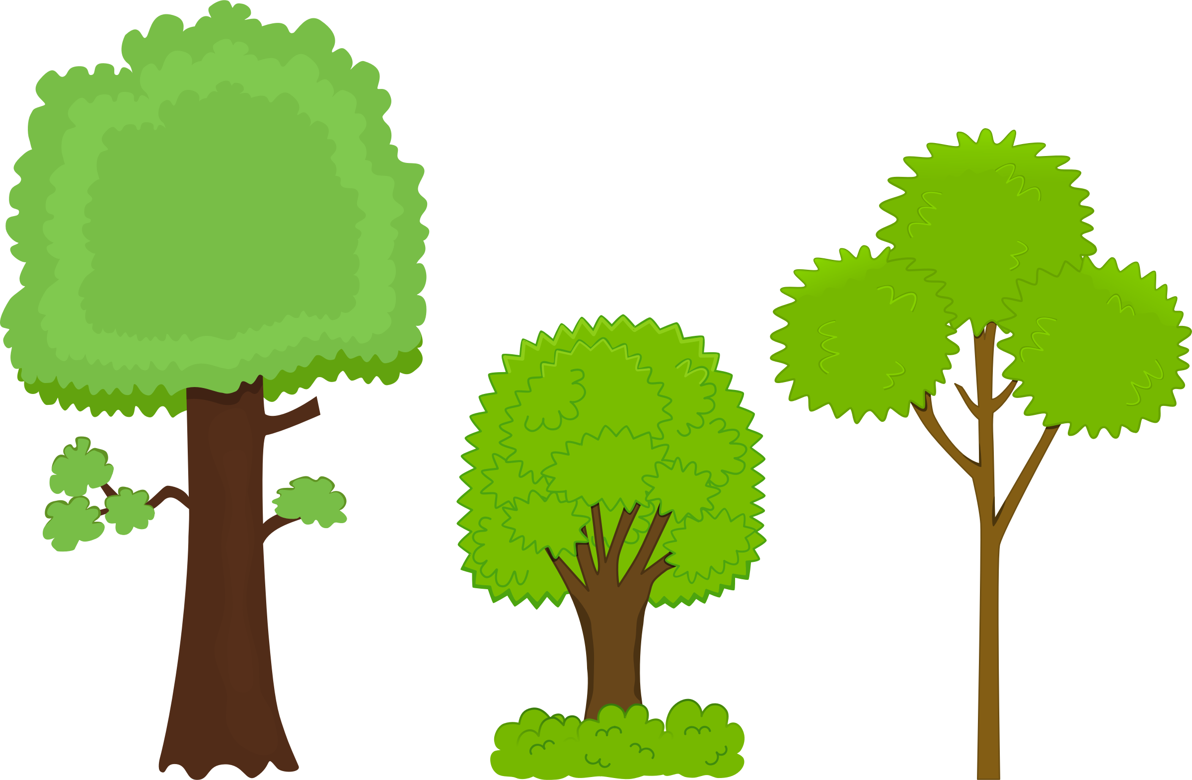 Quickly Clipart Pictures Of Trees Black And White Free.
