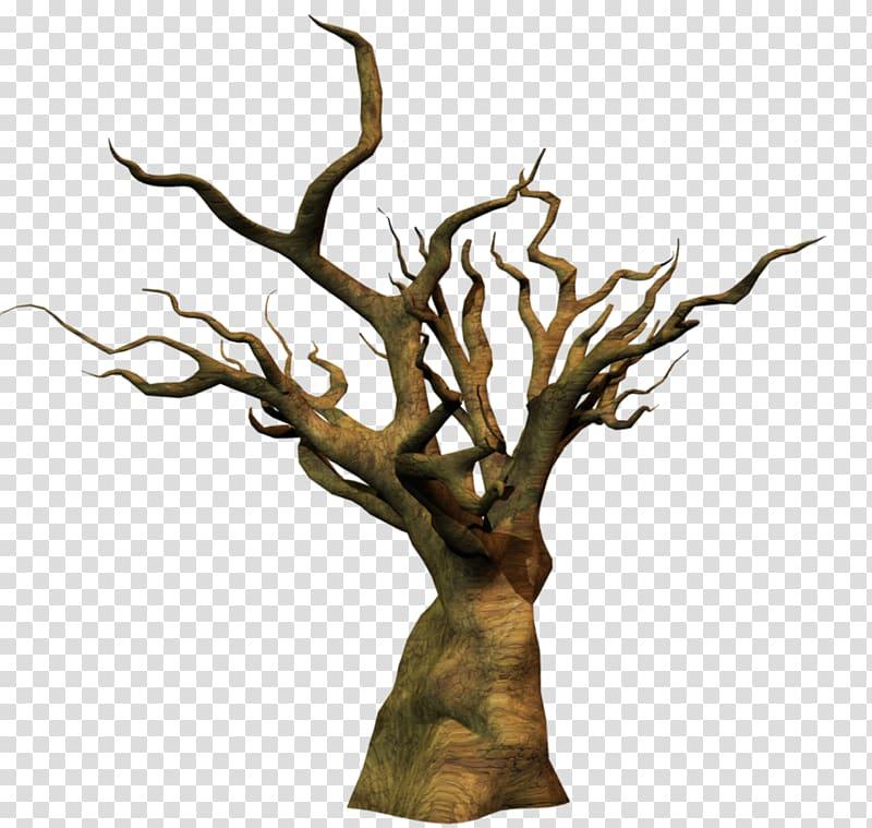 Twig Trunk Wood Tree Snag, wood transparent background PNG.