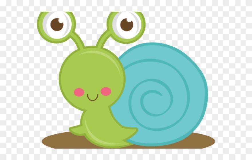 Snail Clipart Ocean.
