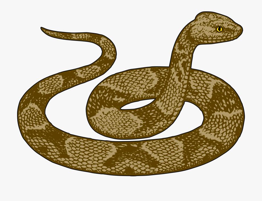 Free Cute Snake Clip Art.