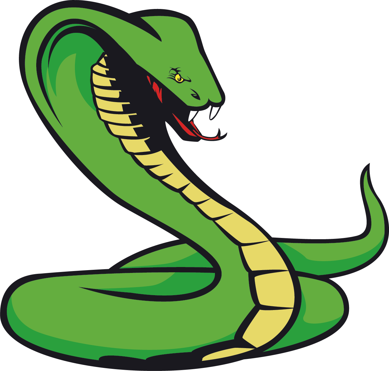 Snake Png Clipart.