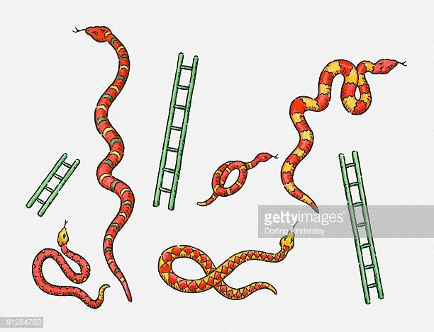 13 Snakes And Ladders Stock Illustrations, Clip art, Cartoons.