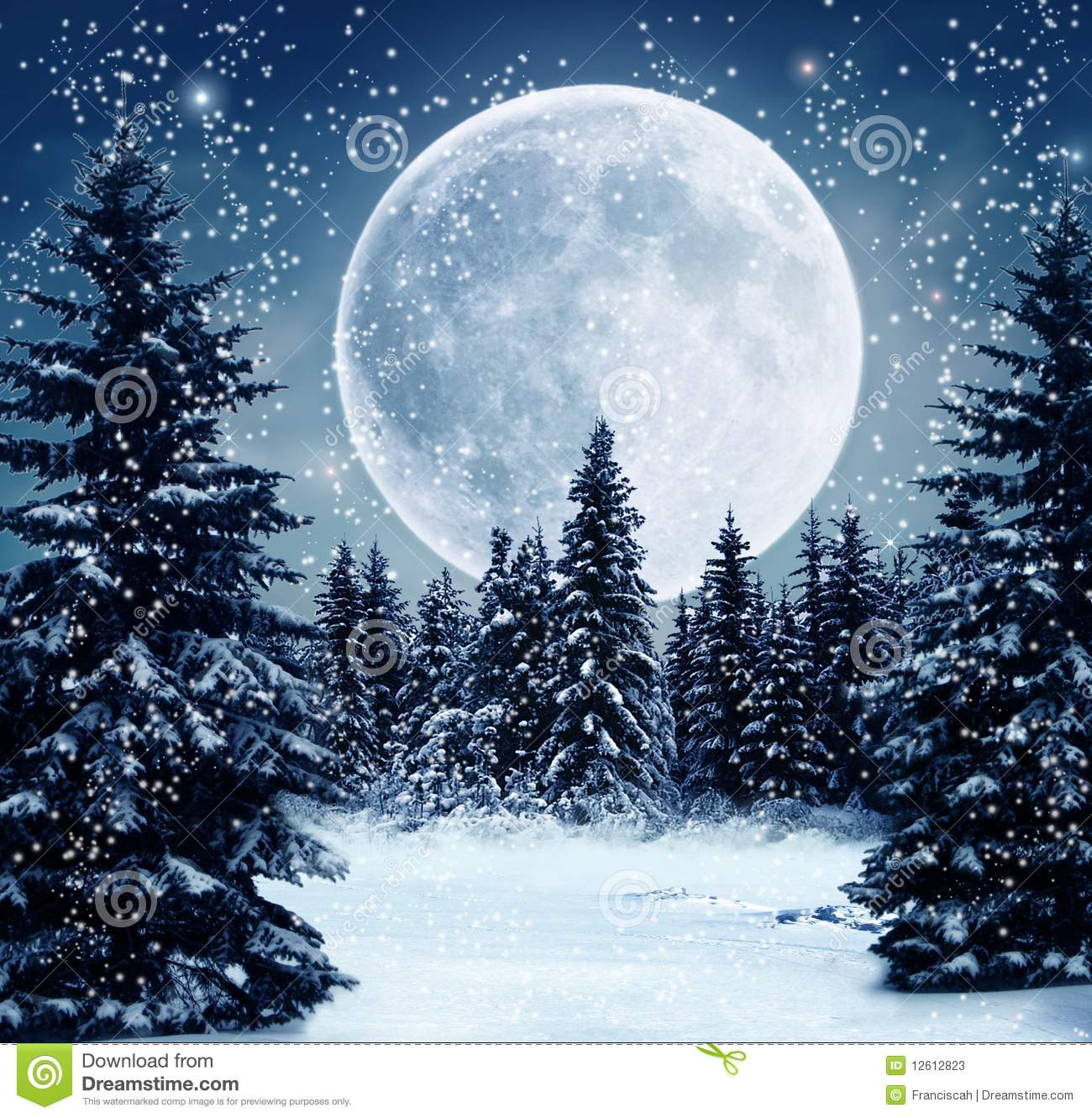 Winter scene stock illustration. Illustration of night.
