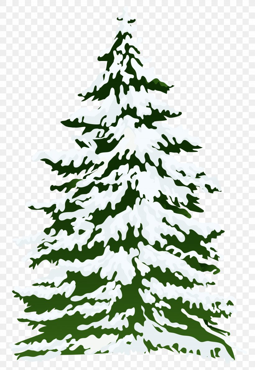 Pine Snow Tree Clip Art, PNG, 4402x6386px, Fir, Black And.