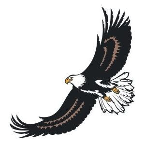 Eagle Soar Logo.