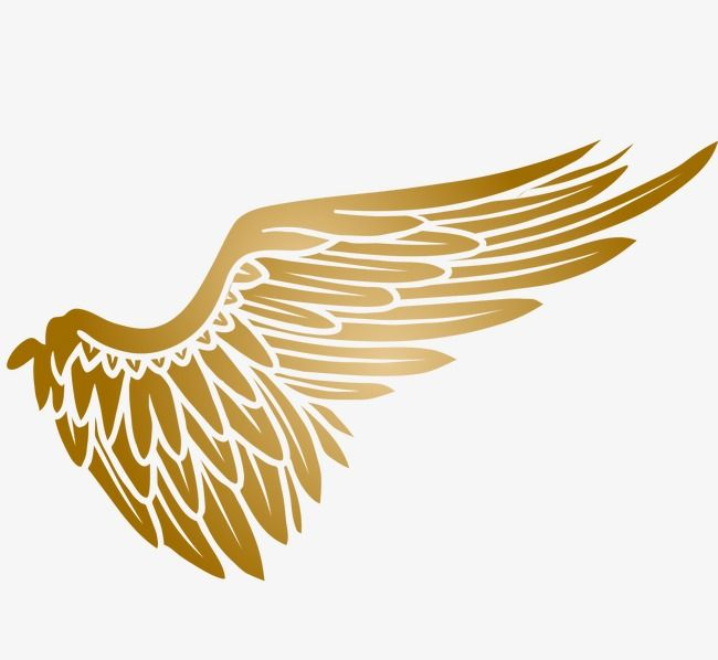 Golden Wings, Wings Clipart, Soar, Fly PNG Transparent.
