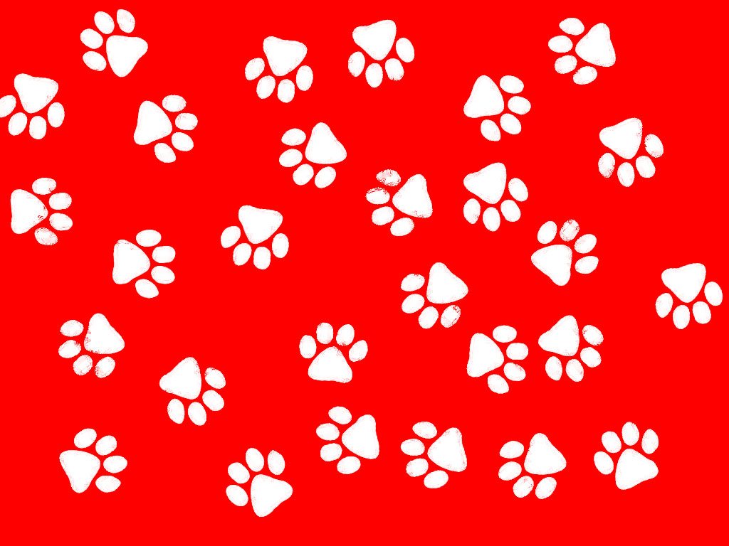 17 Best images about Pawprints on Pinterest.