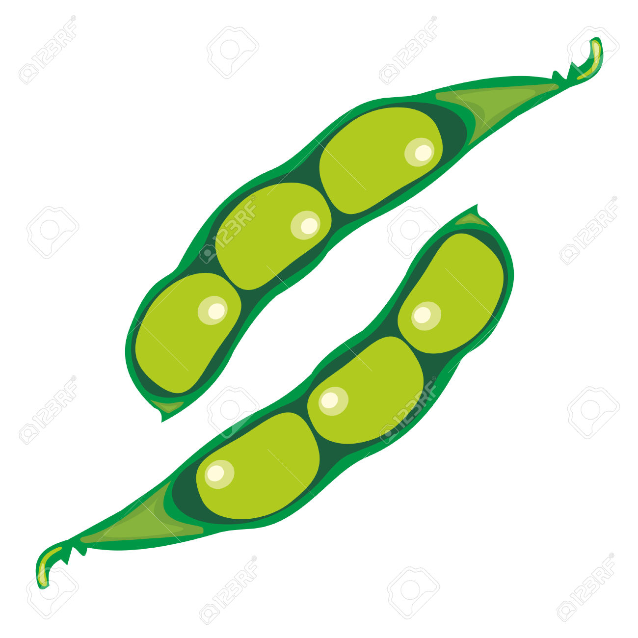 Collection of Soybean clipart.