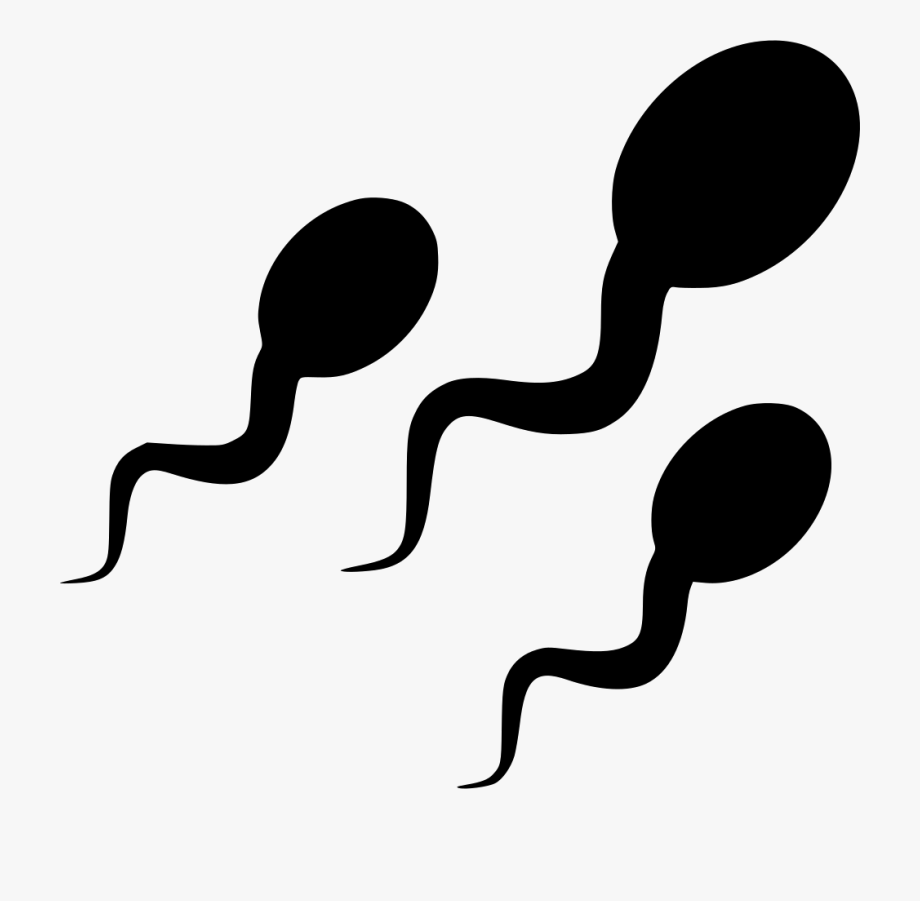 Sperm.