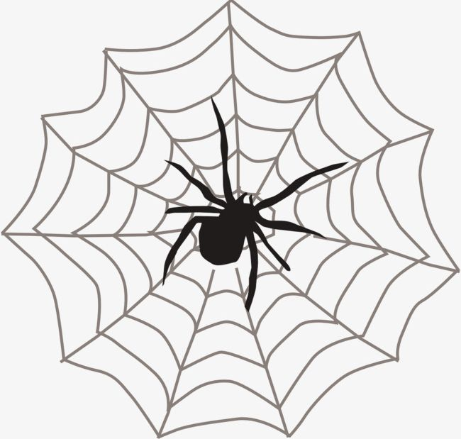 Spider Web Spider PNG, Clipart, Animal, Cobweb, Crawl.