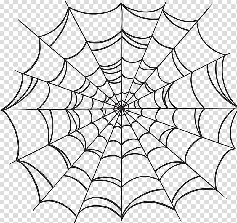 Spider web Drawing, spider transparent background PNG.