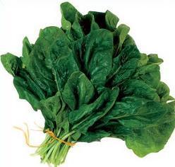 Clipart spinach 2 » Clipart Portal.