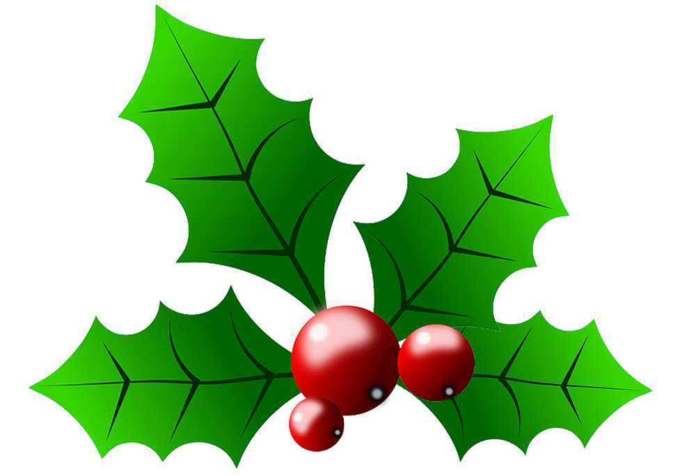 Collection of free Berries clipart sprig holly. Download on.