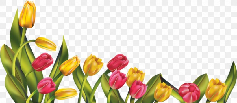 Spring Flower Free Content Clip Art, PNG, 937x410px, Spring.