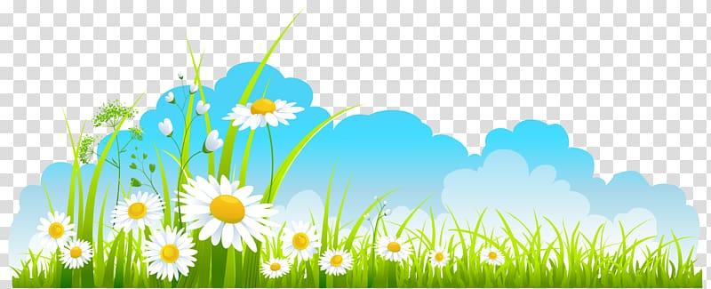 Spring Free content , Spring transparent background PNG.