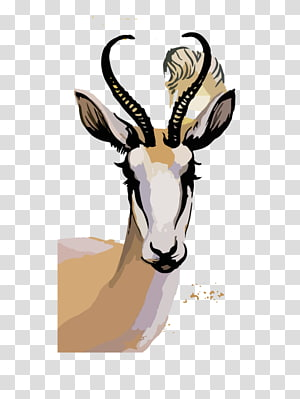 Springbok transparent background PNG cliparts free download.